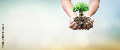 Leinwand Poster World environment day concept: Human hands holding big tree over green forest ba