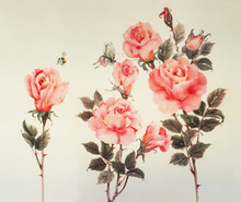 Three Branches Of Pink Roses, ...