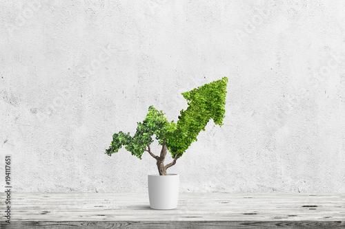 tree Tableau sur Toile