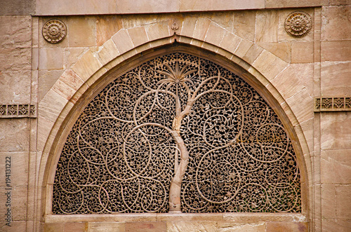 Valokuva  Carving details on the outer wall of the Sidi Sayeed Ki Jaali (Mosque), Built in