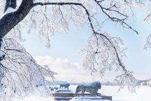 Winter Neva In Saint-Petersbur...