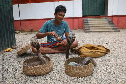 Aluminium Prints Bestsellers Schlangenbeschwörer in Sri Lanka