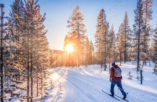 Staande foto Wintersporten Cross-country skiing in Scandinavia at sunset