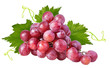 canvas print picture - Fresh grapes isolated on white background