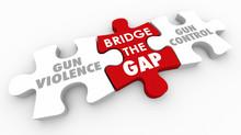 Bridge The Gap Between Gun Vio...