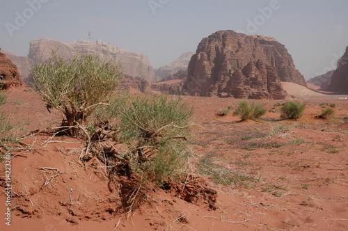 Photo  Jordanie, désert du Wadi Rum