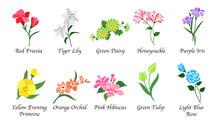 Organic Nature Botanic Garden ...