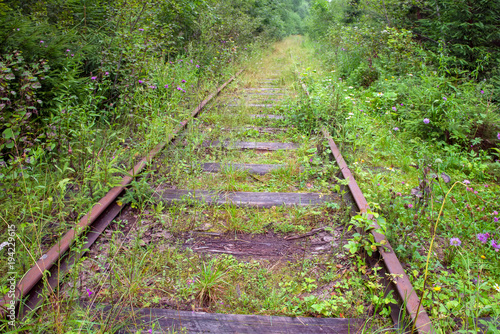 The old railroad tracks of the Valdai-Krattsy line. Krestetsky District, Novgorod Region Russia. Was built in 1914-1916