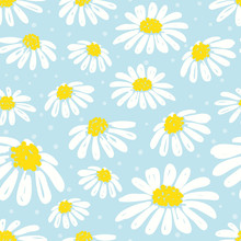 Seamless Daisy Pattern. Vector Background With White Chamomiles On Blue.