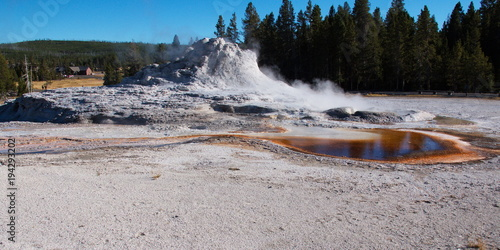 Fotografie, Obraz  Castle Geyser in Yellowstone National Park in Wyoming in the USA