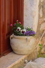 Flower Composition Of Violets,...