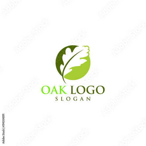 Obraz oak vector graphic abstract logo template download - fototapety do salonu