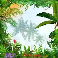 Fototapeta Las Tropical landscape with palm trees and leaves