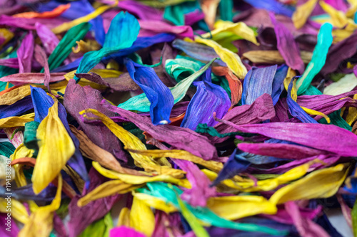 Foto op Plexiglas Paradijsvogel Flower Petal Multicolor Background Texture