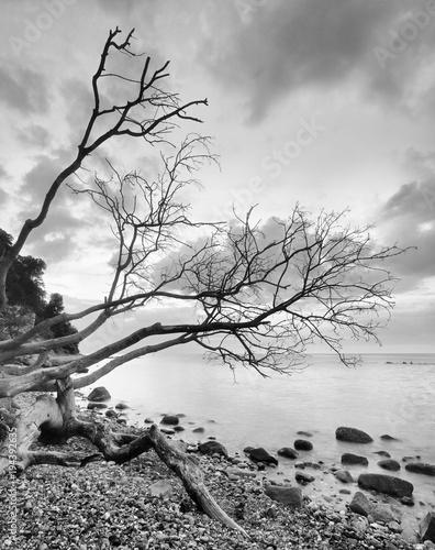krajobraz-przybrzezny-w-parku-narodowym-jasmund-strome-wybrzeze
