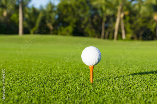 Fotografie, Obraz  Golf ball on tee on golf course over a blurred green field