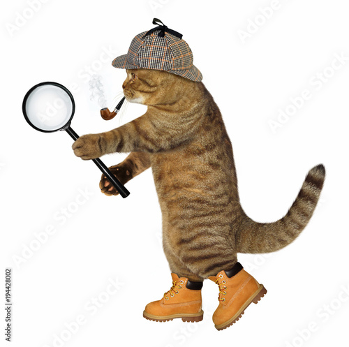 The cat detective with a smoking pipe holds a magnifying glass Wallpaper Mural