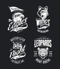 Vintage Leopard, Wolf, Eagle A...