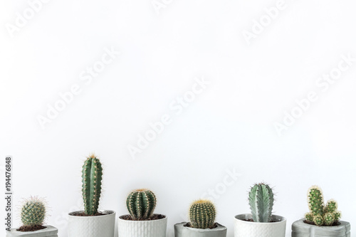 Foto op Canvas Cactus Many cactuses in concrete diy pots on a white background