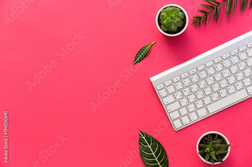 Flat lay, office desk and keyboard with green leaves and succulent over pastel background
