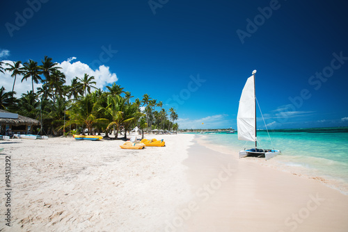 palm tree and tropical beach in punta cana dominican republic buy