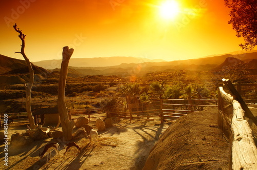 Fotografie, Obraz  Once upon a time in the west