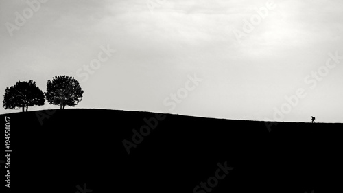 Fotografie, Obraz  Lonely mountaineer silhouette walking over hill showing his perseverance black a