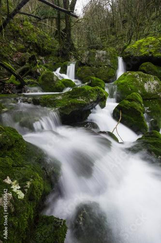 Foto op Canvas Salto de agua en un bosque humedo. Barranco de Arritzaga, Gipuzkoa, España