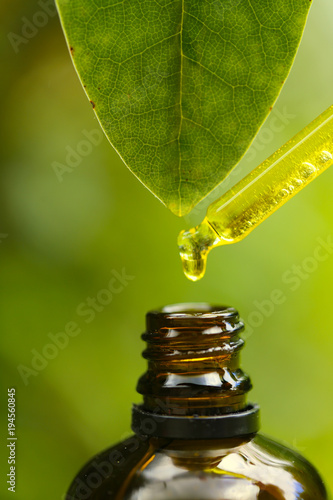 Fototapeta pure natural oil. Glass pipette with Pure Natural Essential Oil and a green leaf with a drop of oil on a green blurred background.Organic Botanical Serum. obraz na płótnie