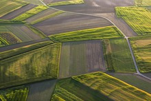 Agricultural Landscape, Fields...