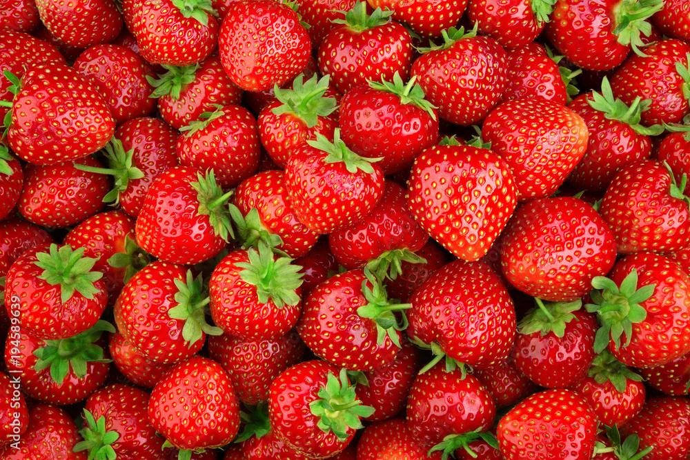 Fototapety, obrazy: Strawberry. Fresh organic berries macro. Fruit background