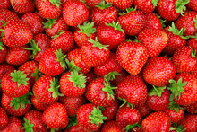 Strawberry. Fresh Organic Berr...