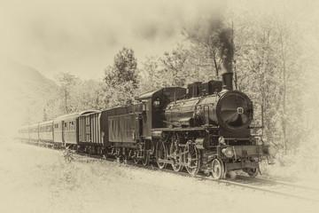 Old steam locomotive in vin...