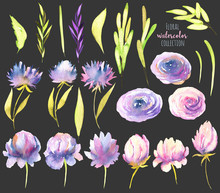 Watercolor Pink And Purple Peo...