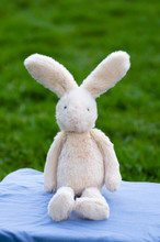 Stuffed Bunny Sitting On Blue ...