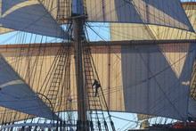 Man Climbing The Rigging Of A ...