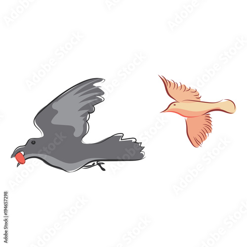 Graphic Design Editable For Your Hand Drawn Bird On White Background Vector Illustration