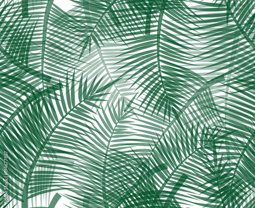 Ingelijste posters Tropische Bladeren Seamless pattern with green palm twigs. Vector background for your design.