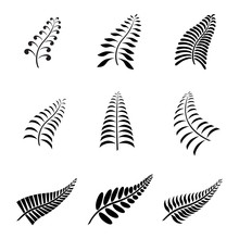 New Zealand Fern Leaf Tattoo A...