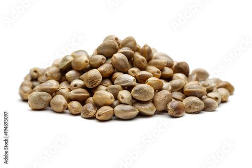 Obraz Hemp seed - fototapety do salonu