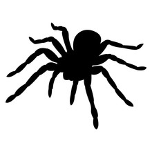 Vector Image Of Spider Silhoue...