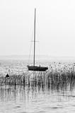 Jezioro Lacanau w czerni i bieli - 194700203