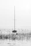 Jezioro Lacanau w sezonie zimowym - 194700662