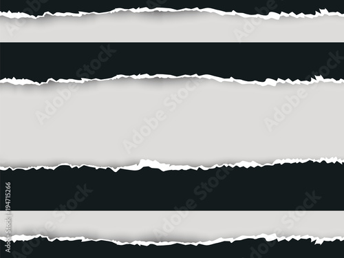 Fototapety, obrazy: Ripped paper long double vector