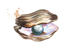 Black Pearl In The Shell. Hand...