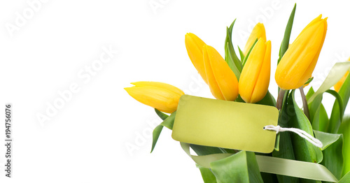 Foto op Canvas Bloemen Mather's Day holiday spring yellow tulips flower bunch with blank greeting card. Beautiful tulip flowers bouquet isolated on white background