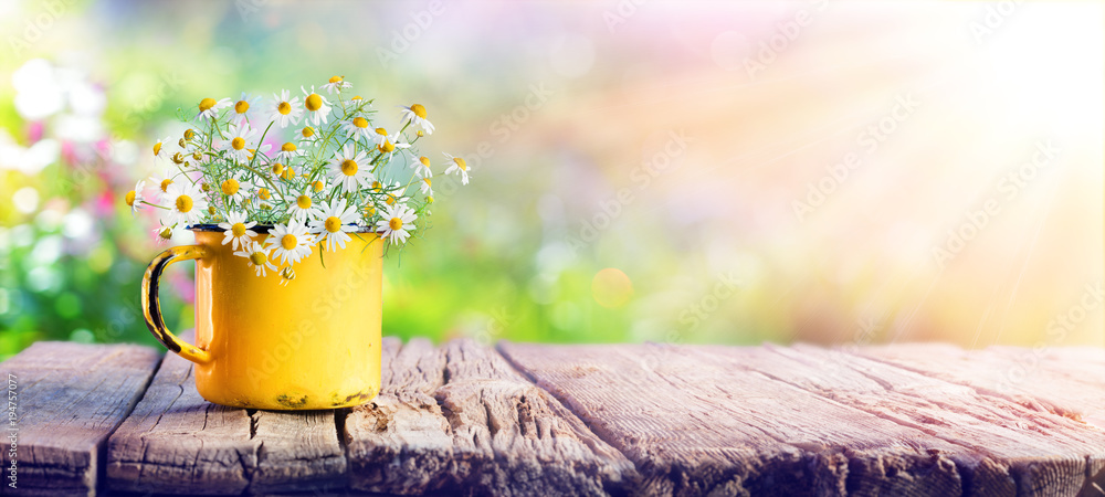 Fototapety, obrazy: Spring - Chamomile Flowers In Teacup On Wooden Table In Garden