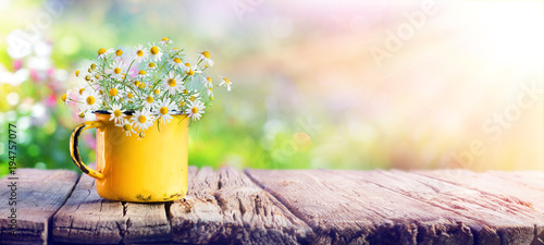 Tuinposter Bloemen Spring - Chamomile Flowers In Teacup On Wooden Table In Garden