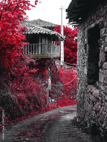Láminas  Horreo escondido. Parres - Asturias
