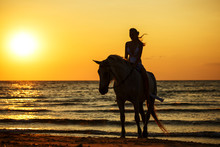 Girl On Horses In The Sea At S...